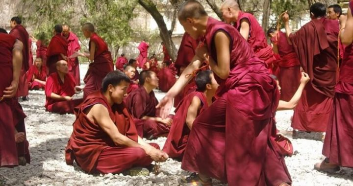 Monks debating at a Monastery in Tibet