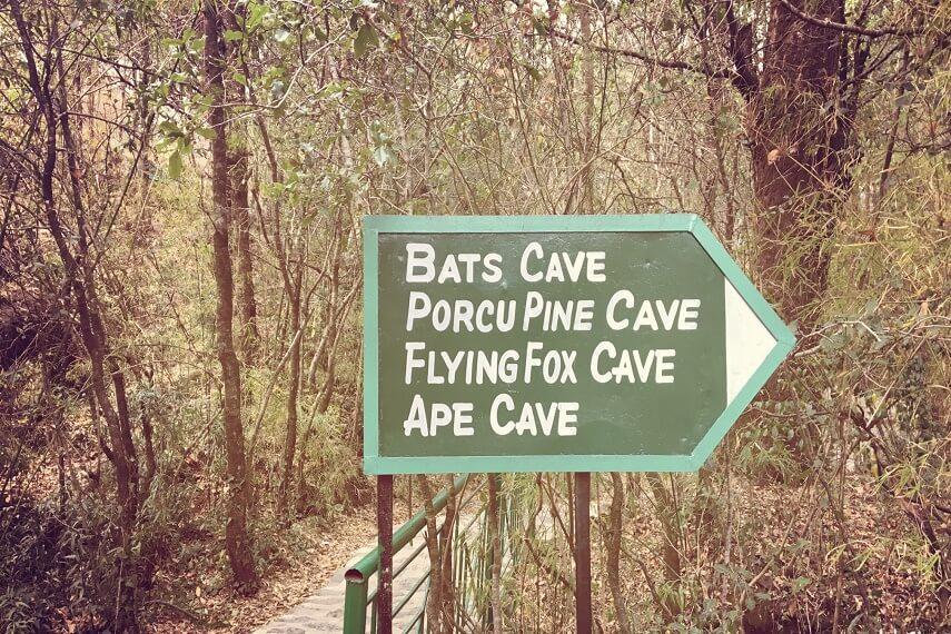 Eco Cave Garden Nainital