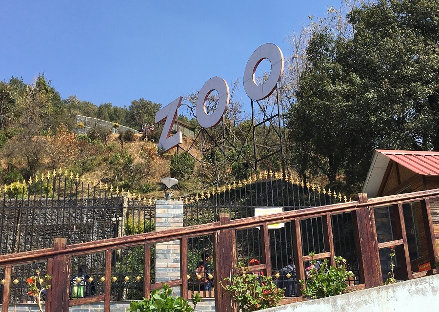 High Altitude Zoo Nainital- One of the 10 Best Places to Visit in Nainital
