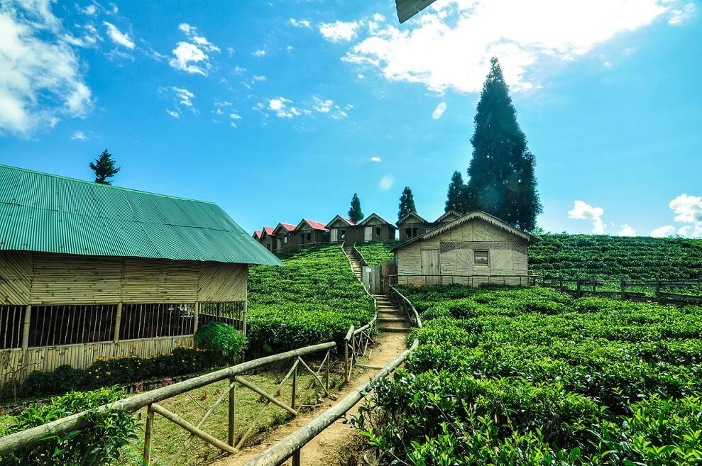 Way to one of the famous cottage Antu cottage, Illam