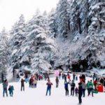 Jammu & kashmir Tour Travel and Tourisms