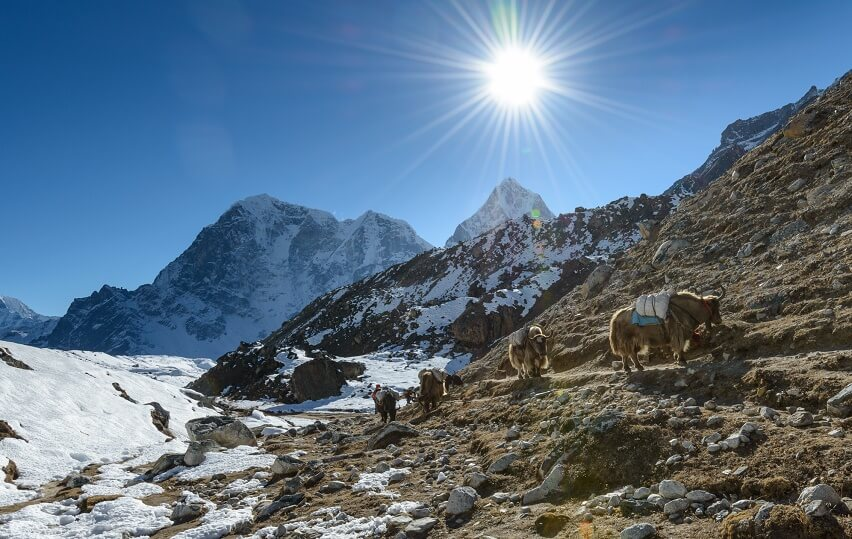 Trekking Routes in Nepal
